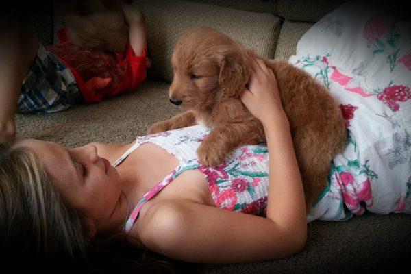 Petra's pup 5